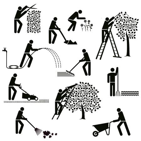 Planting Gardening, garden maintenance