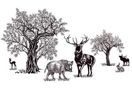 Deer and wild boar Ilustracja