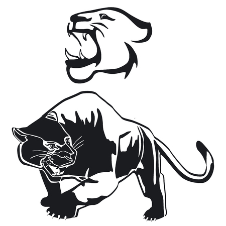 Leopard, panther graphic, illustration. Illustration