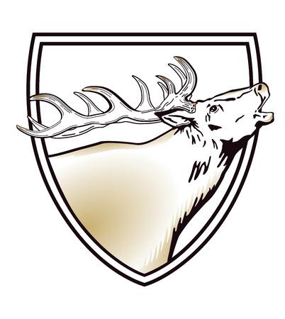 Deer with antler in shield. vector illustration