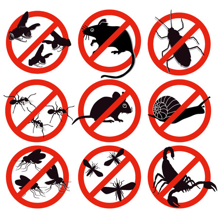 Vermin, pest control Vector Illustration