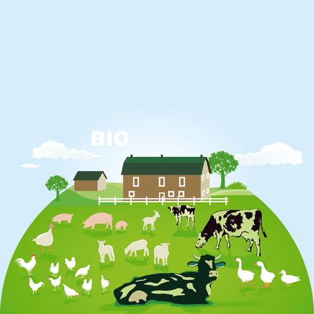Organic farm with pasture illustration.