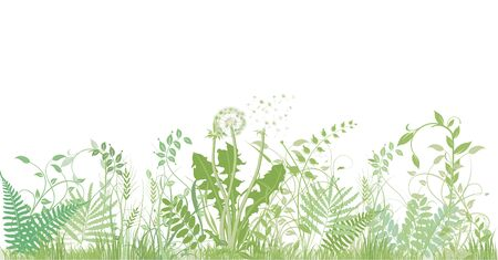Green grasses, plants and herbs Illustration