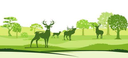 Deer in the landscape - vector illustration