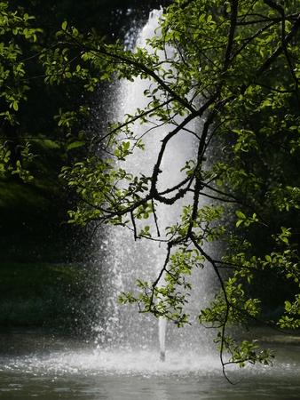 Fountain in lake in Sigueiro Reklamní fotografie