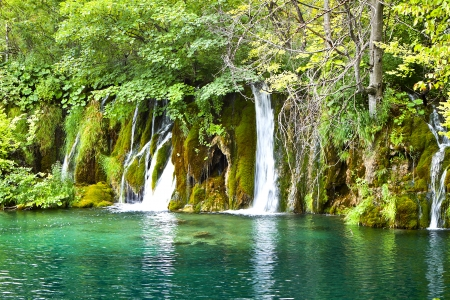 waterfall in forest: Cascading Water. Krka Waterfall National Park in Croatia. Stock Photo