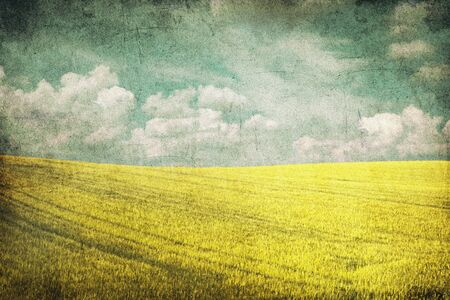 grunge background image of yellow field and blue sky