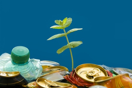 reduce reuse recycle: Plantlet growing on a garbage dump over blue background. Recycling. Stock Photo