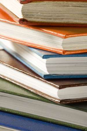 reading material: A stack of reading material, books.