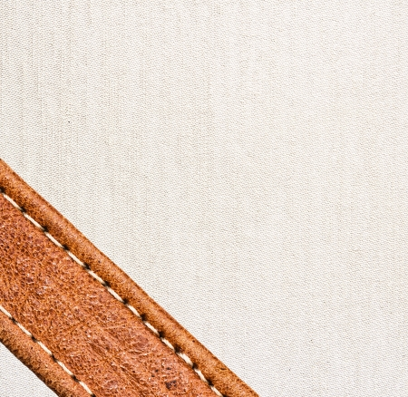 Image of leather and textile background Stock Photo - 13158566