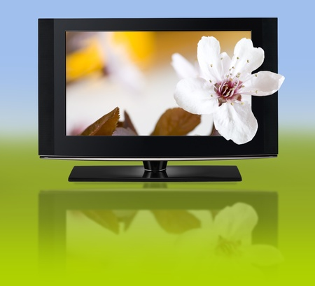 widescreen: LCD TV panels  Television 3D production technology concept  Stock Photo