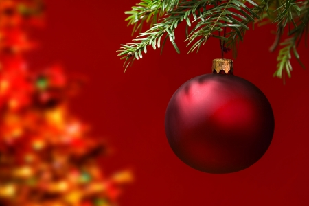 trees photography: Red Christmas ornament hanging, with copy space to the left