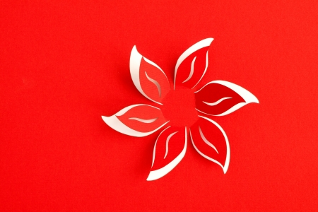 paper cutting: Greeting card with paper flower
