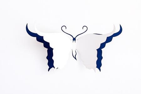 mariposa azul: Tarjeta de felicitaci?n con la mariposa de papel Foto de archivo