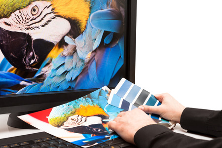 printer drawing: Graphic designer at work  Color samples  Blue parrot macaw bird photo