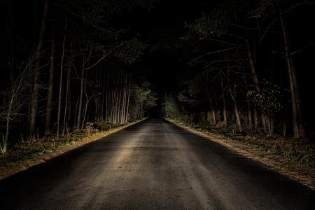 Night Road on dark forest Imagens - 23565995