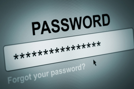 Closeup of Password Box in Internet Browser photo