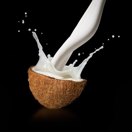 Coconuts with milk splash on black background  photo