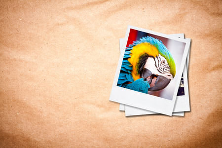Instant photo frames on old paper background  photo