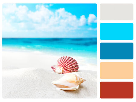 Colour palette with complimentary swatches  photo