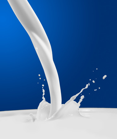 Pouring milk splash on blue background  Empty space  photo