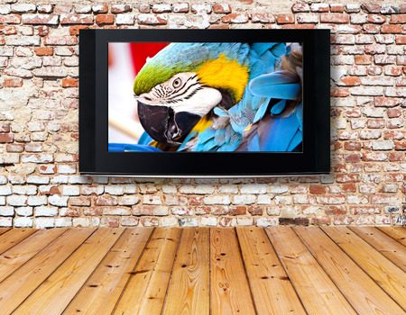 tv screen: interior with a television set on an old wall Stock Photo