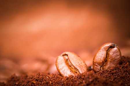 Closeup of two coffee beans macro at roasted coffee heap  photo