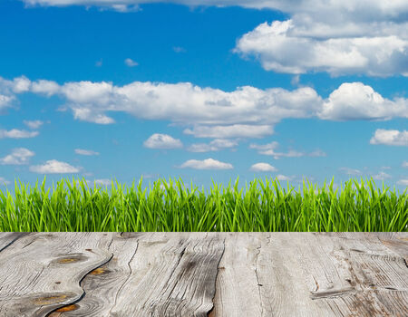 Fresh spring green grass and blue sky on wood floor background. photo