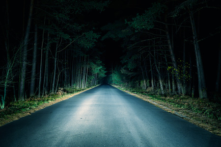 night highway: Night Road on dark forest.