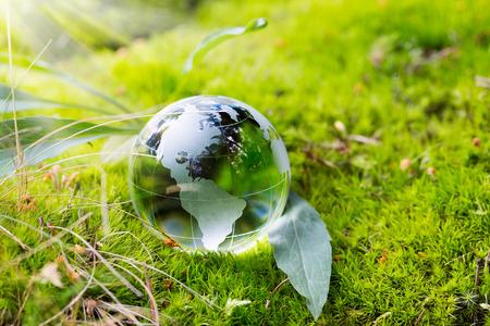 Kristalbol rustend op mos in een bos.