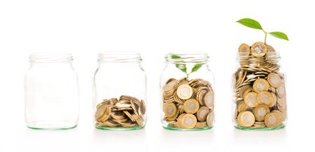 Peníze rostoucí rostlina krok s vkladovou mincí v koncepci banky. Samostatný v bílém.