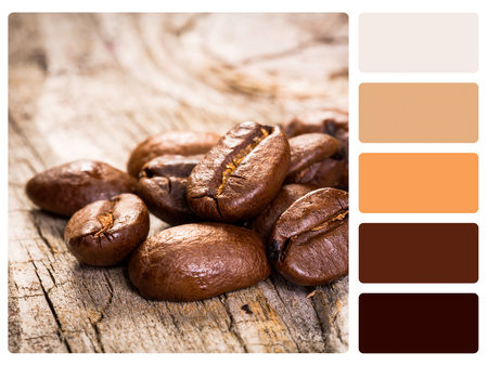 complimentary: colour palette with complimentary swatches. Stock Photo