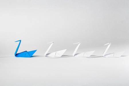 Leiderschap concept met origami vogel leidt onder witte.