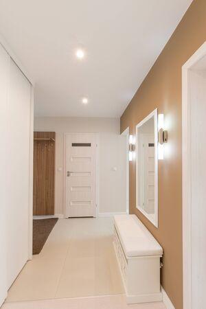 anteroom: Luxury modern style anteroom. Home interior.