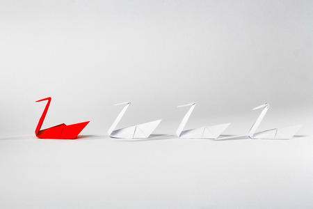 lider: Concepto de la dirección con el pájaro de papel de origami líder entre blanco.