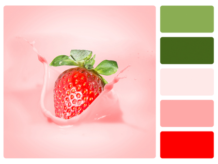 Colour palette with complimentary swatches. Fruit concept.