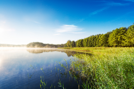 blue green landscape: lake forest water sky sunlight sunrise mist landscape sun blue green light design backgrounds - stock image Stock Photo