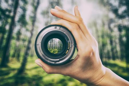 写真ビュー カメラ写真レンズ森林木レンズ ビデオ写真デジタル ガラスの手を通してぼやけてフォーカス人コンセプト - ストック イメージ