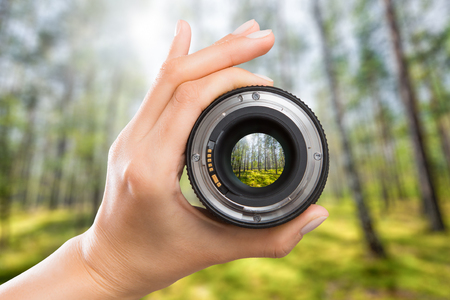 photography view camera photographer lens forest trees lense through video photo digital glass hand blurred focus people concept - stock image