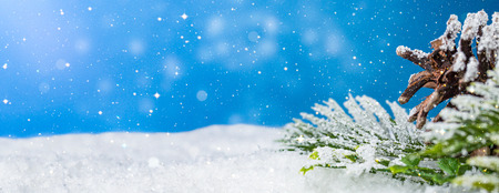 snow background closeup decoration white christmas space snowflakes branch horizontal copy space nobody xmas pine glitter card holiday concept - stock image