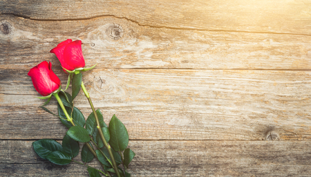 Valentines Day background. Two red roses lie on the wood.