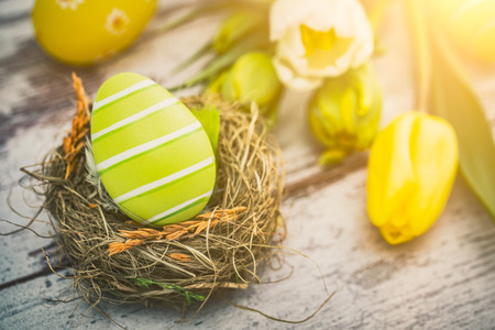 Easter eggs in a birds nest on a wooden table. Flowers symbol of spring.