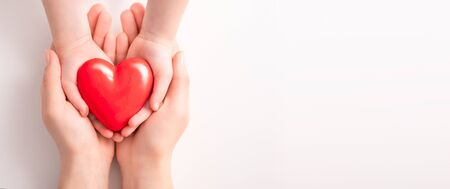 An adult and a child hold a red heart in their hands. Concept for charity, health insurance, love, international cardiology day