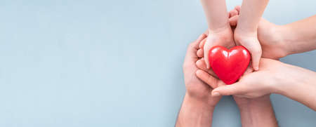 An adult, mother, father and child hold a red heart in their hands. Concept for charity, health insurance, love, international cardiology day.