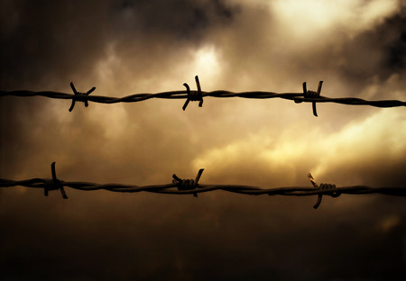 Barbed Wire Fence Stock Photo - 1621008