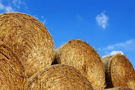 Stacked straw bales on a sunny summer day, just after harvest.