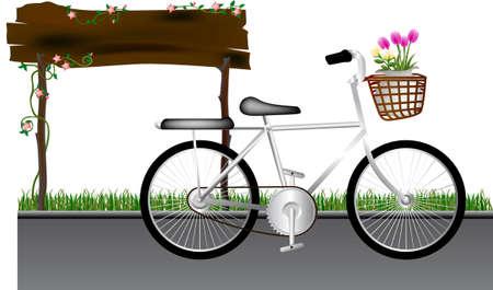 art flower: Bicycle art design in road and flower in basker front Illustration