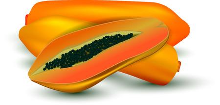 exotic fruit: ripe papaya vector design
