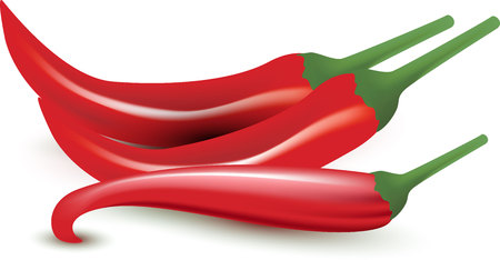 chilly: Red chilly or pepper isolated on white background