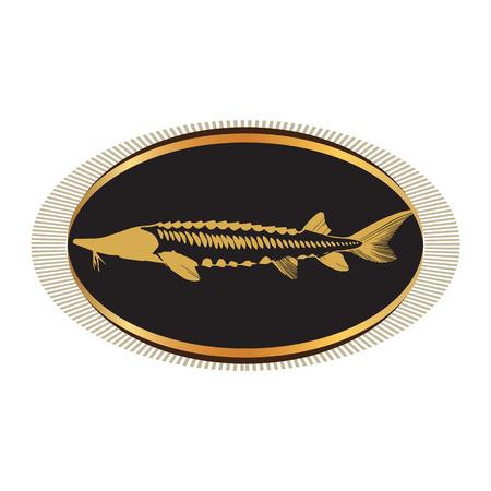Disegni Caviar Concept. AI 10 supportato.